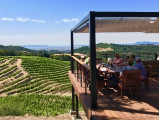 Napa Valley Wine Excursions Detailed Caption
